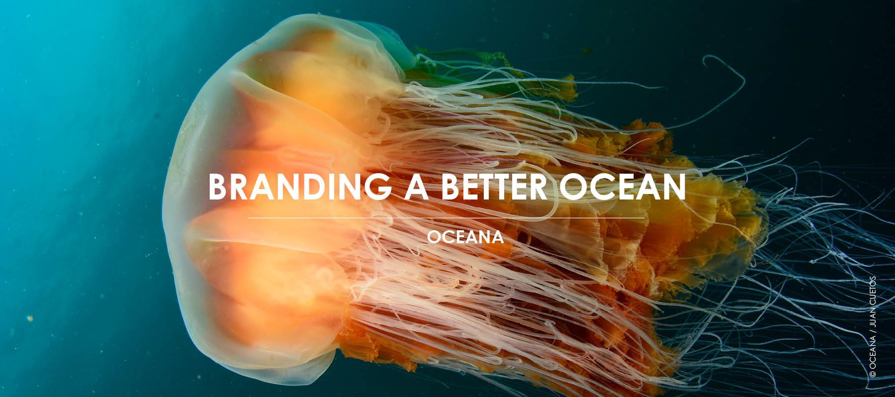 Branding A Better Ocean - Branding A Better World & Oceana